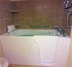 Total Focus Bathing Safety with Free Installation Charges for Senior