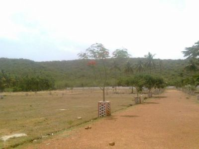 RESIDENTIAL PLOTS FOR SALE IN ARCOT