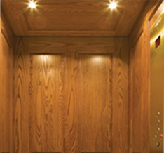 Day Elevator and Lift offers Savaria's Eclipse Home Elevator