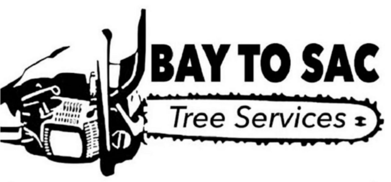Bay To Sac Tree Services