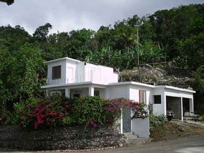 Jamaican Eco Farm, House and Land For Sale