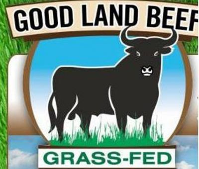 Eat Grass Fed Beef, Remain Healthy