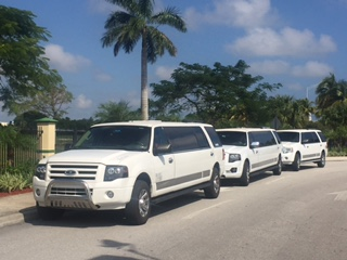 Best Florida Limousine has special  wedding limousines that are ready to pick up the whole Bridal Pa