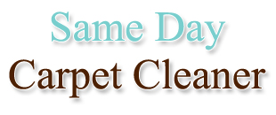 Carpet cleaner in Highlands Ranch