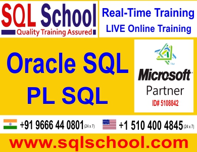 Real Time Online Training On PL SQL @ SQL School