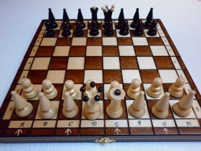 MAZO instead of chess - a new board game simpler than chess and more interesting than checkers
