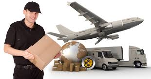 Packers and Movers Insurance Service Provider