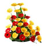 Online Flowers Delivery In Trivandrum From Floweraura