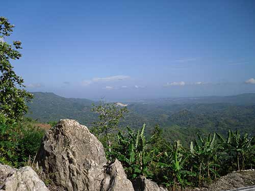 Jamaican Rural Eco Property in 20 Acre Mountain-Top Setting