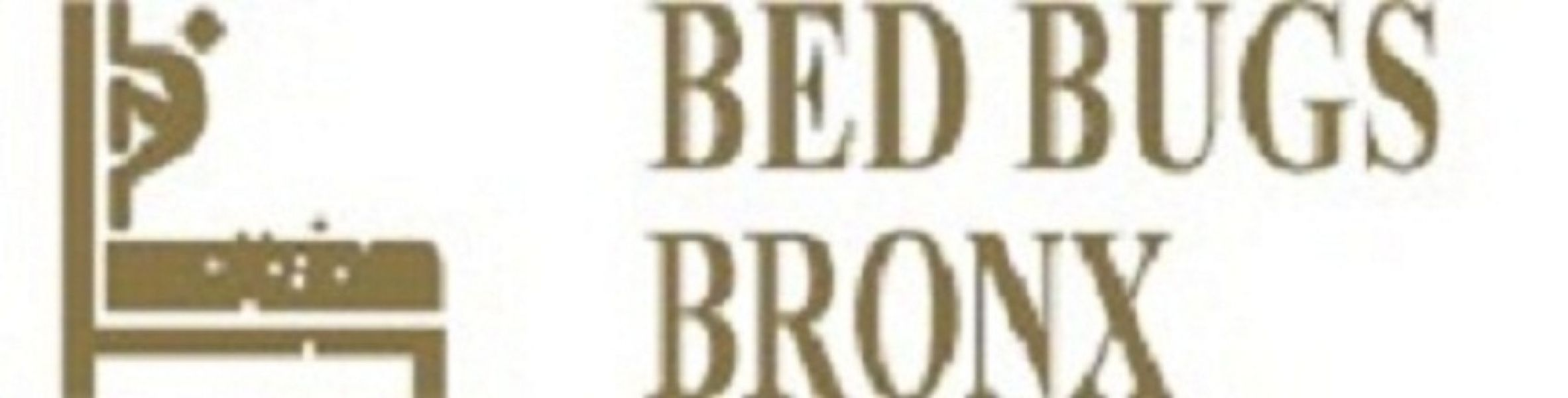Bed Bugs Bronx
