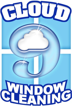 Window Cleaning Service Evansville - Cloud 9 Rocco Aust
