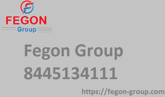 Fegon-Group | 844-513-4111 | Best Network Security Solutions