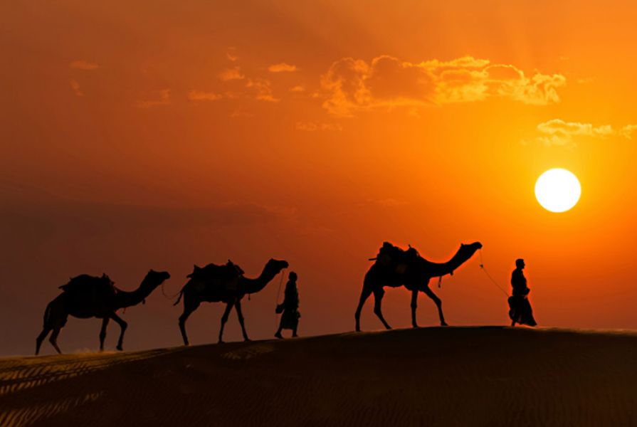 Best Of Rajasthan holiday deals
