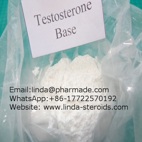 Muscle Building Steroids Testosterone base