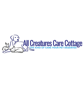 Find Veterinary Diagnostic Costa Mesa - Dr. Rand Spongberg - Local Veterinary