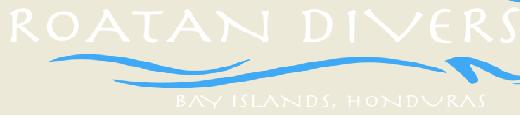 Find the best Roatan diving services at Roatan Divers