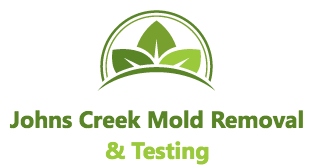 Johns Creek Mold Removal and Testing
