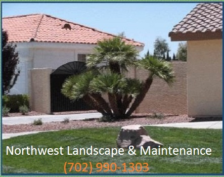 Northwest Landscape & Maintenance